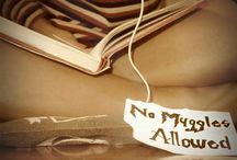 No Muggles Allowed / Harry Potter
