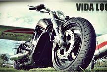 "V-Rod Harley ""Invictus"" Designed by Vida Loca Chopper / V-Rod Harley Invictus Designed by Vida Loca Chopper in 2013"