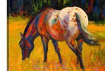 Horses/Konie
