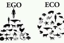 E&C : Ecologia e Civiltà