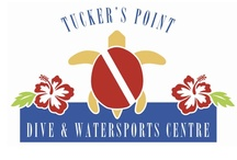 Tucker's Point Dive and Watersports