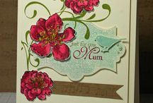 Spring/Spring Holiday Card Ideas