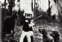 Violins...my favorite