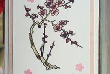 Sakura Birthday Card