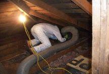 Attic Cleanup Insulation Removal Agoura Hills CA / Get the facts about attic cleanup, insulation removal or replacement in Agoura Hills CA. Animal dropping decontamination