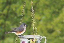 Скворечники, кормушки и поилки для птиц