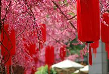 Chinese New Year / by Hakkasan