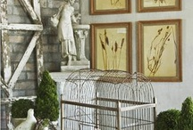 Birdcage / by Mary Clements