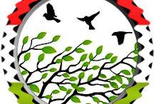 Madarak és fák napja május 10.