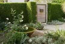 Hedge door