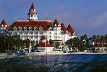 Grand Floridian / by Lisa Courtney