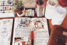 Travel diarys