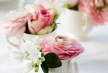 Rosa roser