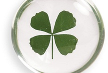 Saint Patricks Day / by Shelburne Country Store