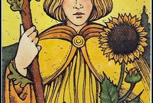 Tarot - Wands / The suit of movement, vavavoum and creativity