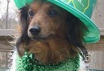 St. Patrick's Day / by Cynthia Henningsen