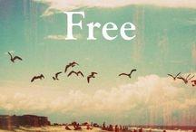CV: FREEDOM / by Krystal Brandt