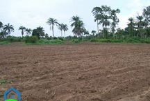 Buy land in Ghana