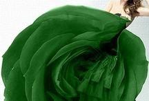 zielono mi