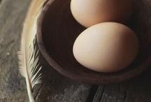 jajka i kury