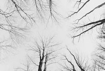 a: grey / aesthetic
