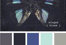 Color scheming