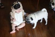 Awesome Pug Clothes / What better way to show how much you love pugs than to wear some of these fantastic pug outfits.