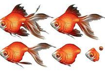 Decopage Fishes