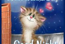 Good night/Good morning