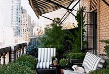 Outdoor / Terrace