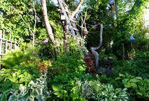 Bohemisk trädgård