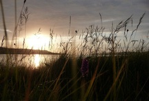 Sunsets on Skye / Lying on the West coast of Scotland, the Isle of Skye brings many astounding sunsets in all seasons.