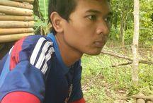 Aarys