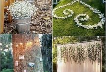 Dream wedding and events