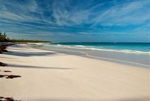 Beachfront Bahamas Real Estate / Bahamas properties with beach front real estate