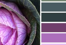 Favorite Color Palettes / by Crystal Davis