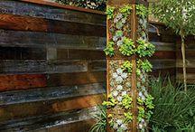 Vertical gardening / Vertikalne záhrady