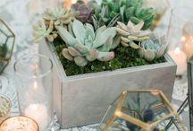 G&P cactus inspiration wedding