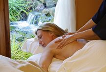 Massage Treatment Information / Learning more about massage and wellness treatments.