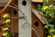 Birdhouses / by Teresa Patterson