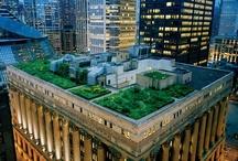 .urban.gardening.