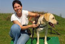 Baráthegyi vakvezető kutya tanfolyam 2014. augusztus / A héten két új párosunk kezdte meg a vakvezető kutya tanfolyamot: Alexandra és Maya, valamint Ervin és Tex.