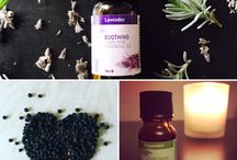 The F Word Blog - Aromatherapy
