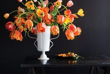 favourite flowers | tulips