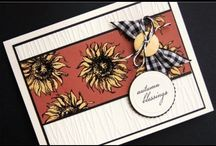CARDS - Gina K / by Jeanette Cloyd