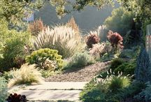 Dry Gardening / Ideas and images for dry climate / mediterranean gardens
