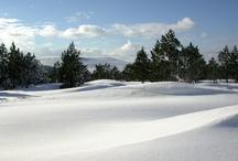 My Cévennes... en hiver / Un blanc manteau magnifie les paysages et offre toue une nouvelle palette d'activité.