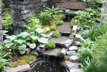 ponds/pools
