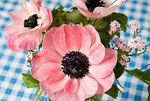 Dekoration -Blumen