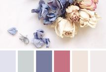Color which we like